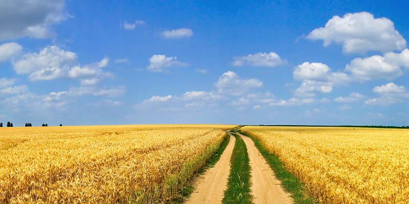 Bekanntmachung Forderungen Bei Drittschulden Im Agrarsektor